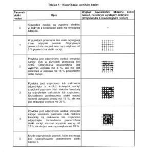 Skala ISO2409 PL